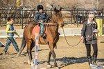 В Приамурье детей с ДЦП лечат общением с лошадьми