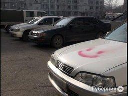 Несколько десятков машин измазали краской в Хабаровске