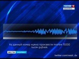 Более двух миллионов рублей только за последний месяц удалось заработать телефонным мошенникам, спекулирующим на доверчивости жителей Хабаровского края