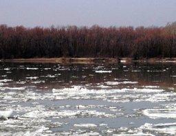 На реках Хабаровского края началось ледообразование