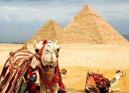 Тринадцать жителей Хабаровского края до сих пор находятся на отдыхе в Египте и категорически отказываются эвакуироваться из страны
