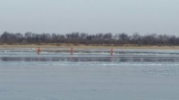 В Хабаровском районе спасатели сняли с льдины двух человек