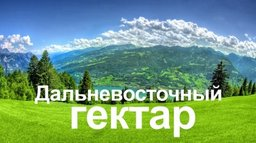 """Главы дальневосточных регионов поддерживают законопроект о """"Дальневосточном гектаре"""""""