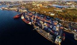 China Petrochemical Development интересуется Свободным портом Владивосток