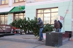 Одна из первых елок в Хабаровске завалилась набок