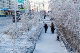 Японские компании развивают проекты в сфере энергетики в Якутии