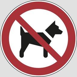 Мало кто знает, в Хабаровске за выгул домашних животных на газонах, детских и спортивных площадках, вблизи детских учреждений и в местах общего пользования - ШТРАФ для граждан 1-3 тыс
