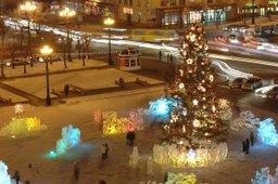 В Хабаровске началась установка главной новогодней ёлки края
