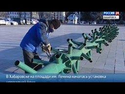 В Хабаровске приступили к установке главной новогодней елки города