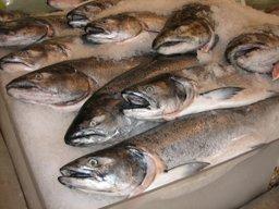 Проект «Доступная рыба» в Хабаровском крае продолжит действовать и в следующем году
