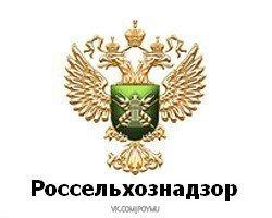 Почти три килограмма лемонграсса и имбиря изъяли в аэропорту Хабаровска