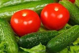 Чегдомын войдет в число четырех российских моногородов, в которых быстрыми темпами построят современные теплицы и компенсируют россиянам запрещенный импорт томатов и огурцов из Турции