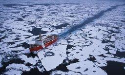 В Санкт-Петербурге обсудили арктические ТОРы и развитие Северного морского пути
