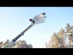 Две новогодние елки установили на стадионе имени Ленина в Хабаровске