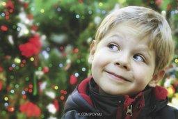 Хабаровчане могут принять ребёнка из детского дома в гостевую семью на время новогодних каникул