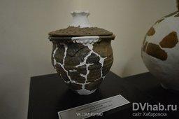 Частицы каменного и железного веков цивилизации представил горожанам музей истории Хабаровска