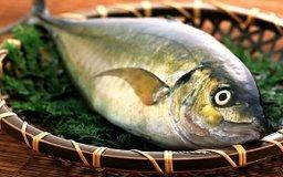 «Рыбная неделя» может пройти в Хабаровском крае