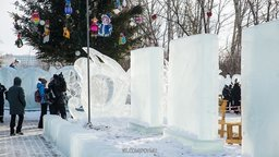 Ледяные цветы и птицы появятся в хабаровском парке «Динамо»