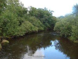 Новая особо охраняемая природная территория появилась в Хабаровском крае