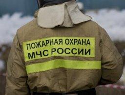 Итоги новогодних и рождественских праздников в Хабаровском крае