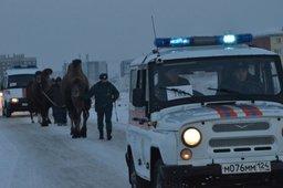 Красноярские сотрудники МЧС России спасли замерзающих цирковых зверей