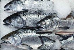 Дальневосточная рыба по минимальной цене будет доступна жителям края в 2016 году