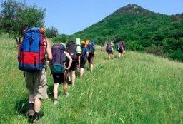 Почти 500 тысяч туристов посетили Хабаровский край в прошлом году