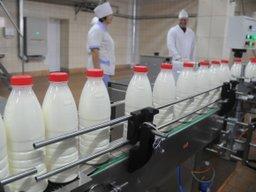 Краевой сельскохозяйственный фонд профинансировал первые аграрные проекты