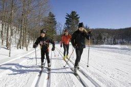 Всероссийский день зимних видов спорта отметят в крае