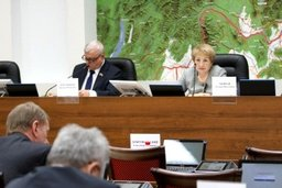 18 февраля состоится внеочередное заседание комитета по вопросам государственного устройства и местного самоуправления