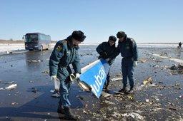 На месте катастрофы авиалайнера в Ростове-на-Дону спасатели обследовали около 10 га