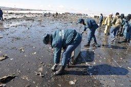 На месте крушения пассажирского самолета в Ростове-на-Дону спасатели приступили к очистке взлетно-посадочной полосы (видео)