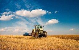 В краевом парламенте обсудят перспективы развития сельского хозяйства