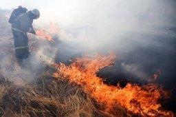 На территории Хабаровского края регистрируются палы сухой травы