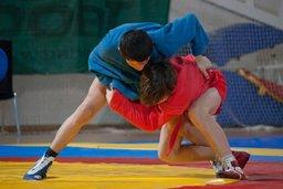 Спортсмены края завоевали медали всероссийских и международных соревнований