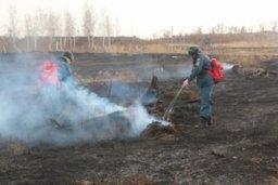 Спасатели ликвидировали несанкционированный пал травы