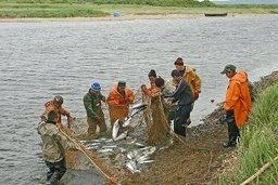 Депутаты отстаивают права коренных народов на доступ к водным ресурсам