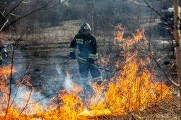 Осторожно с огнем! В Хабаровском крае пожароопасный сезон