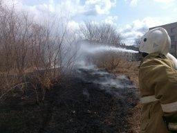 Спасатели ликвидировали горение сухой растительности