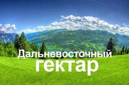 Александр Галушка: «дальневосточный гектар» - шанс, которым может воспользоваться каждый