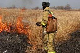 В Хабаровскому крае особый противопожарный режим действует на территории 9 населенных пунктов