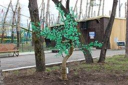 """Новые декоративные деревья """"выросли"""" на набережной в Хабаровске"""