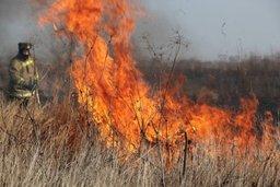 ВНИМАНИЕ! В Хабаровском крае пожароопасный сезон