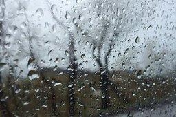 На территорию Хабаровского края придет циклон с дождями и ветром