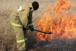 Пожарные подразделения продолжают выезжать на тушение загораний сухой растительности на территории края