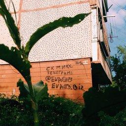 Как срастить наркоту в Хабаровске, знает почти любой школьник