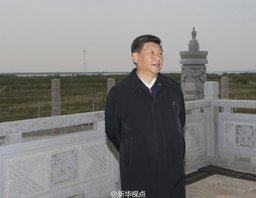 Руководитель Китая Си Цзиньпин пообещал, что на Большом Уссурийском не будет промышленной зоны