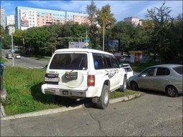 С момента наступления весны в Хабаровске только по заявлению граждан привлечено к ответственности полторы тысячи человек за парковку на газонах и тротуарах