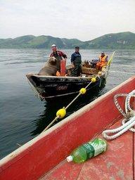 В Сахалинской области морской котик забрался в лодку к рыбакам и отказался вылезать