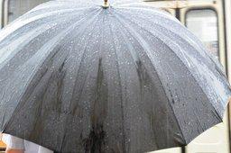 Погоде на следующую неделю в Хабаровске